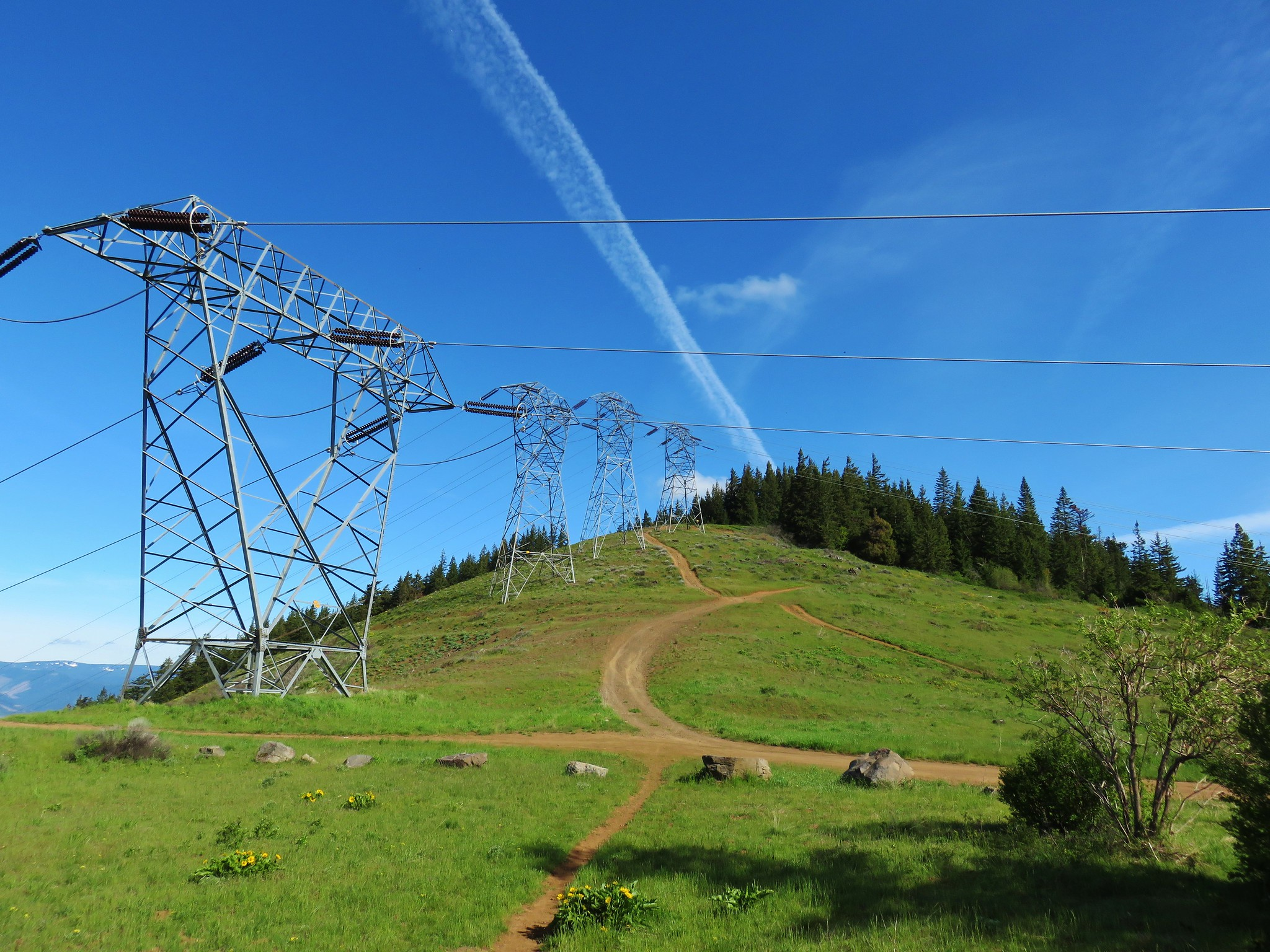 Powerlines along the Surveryor's Ridge Trail
