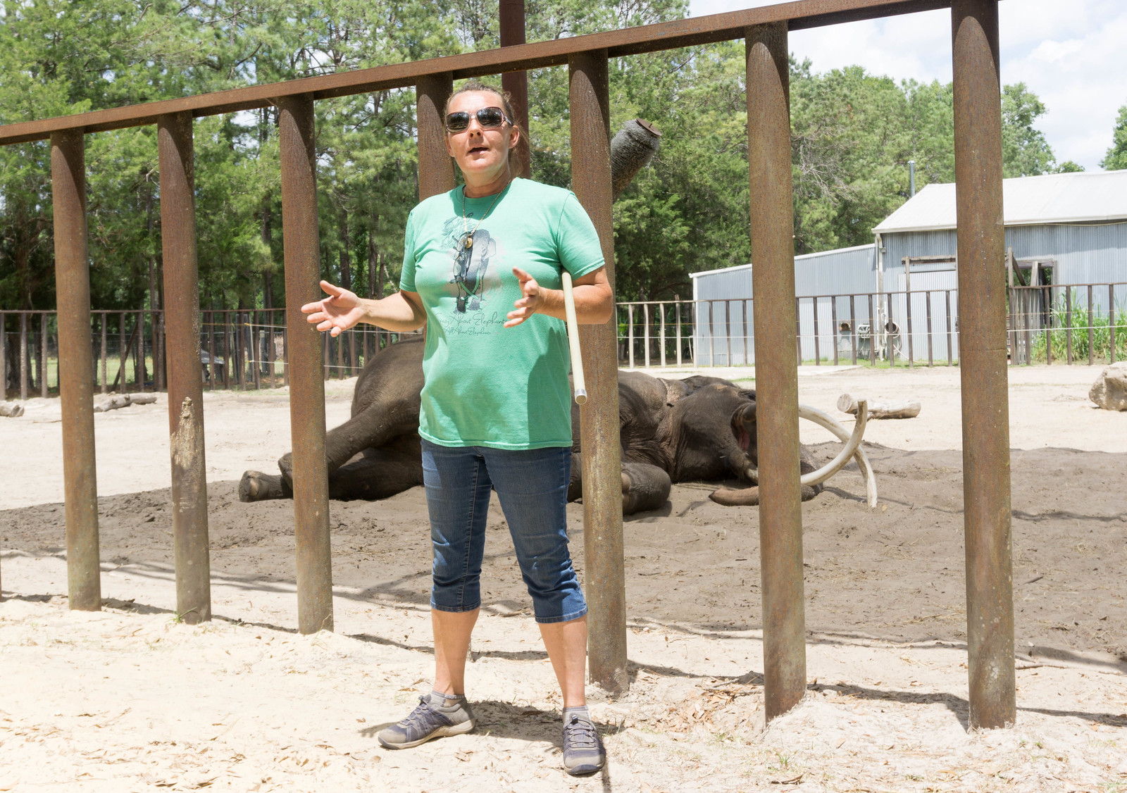 Patricia L. Zerbini Owns All About Elephants at Two Tails Ranch, Williston, Fla., April 30, 2017