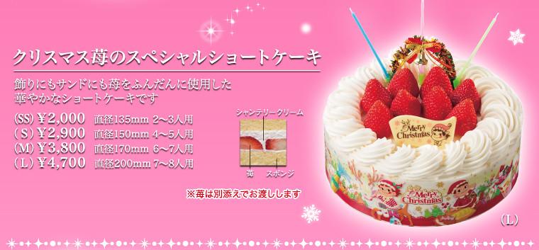 Torta navidad en Japon