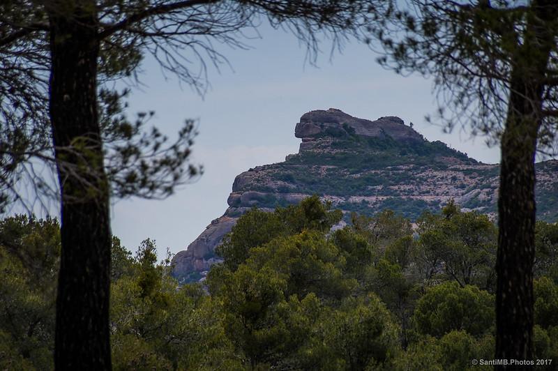 Rocas de la Sierra del Montsant