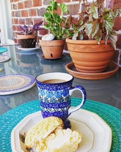 After spending some time watering plants followed by cleaning a portion of the porch it's nice to sit for a few minutes to enjoy the porch.  Coffee and half of a cheese corn muffin leftover from the wonderful​ Mothers Day meal yesterday a then finish with | by orbgkid