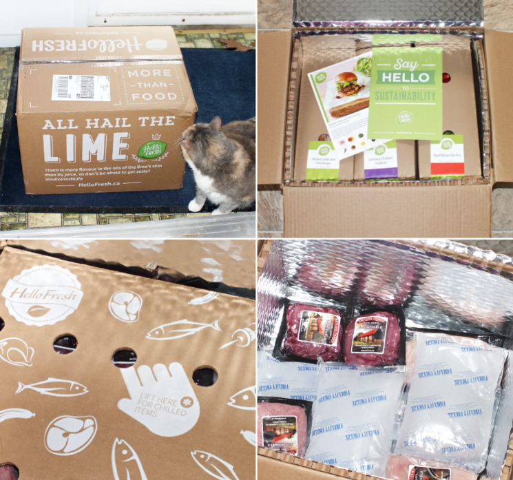 hello fresh meal box (3)