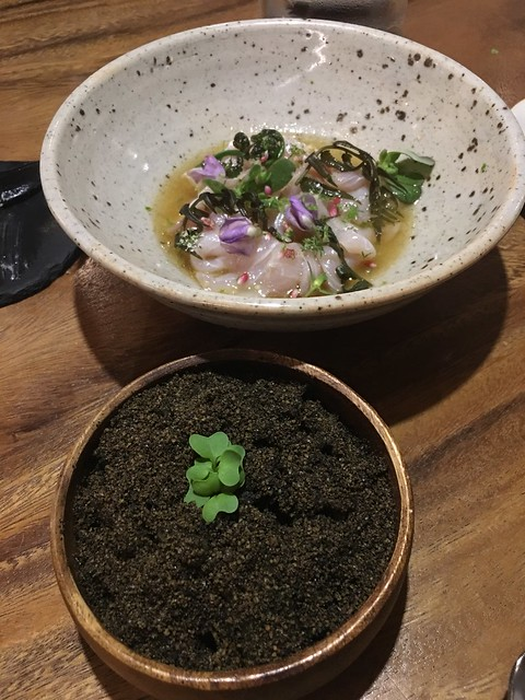 toyo dinner 5 18 2017 040