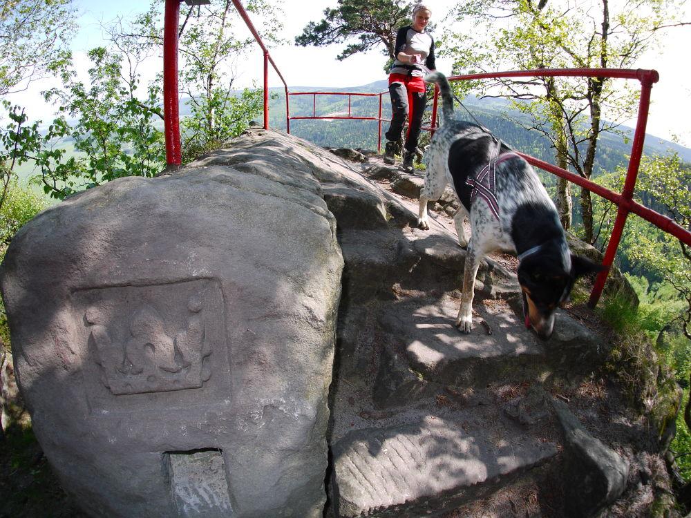Broumovské stěny, Koruna