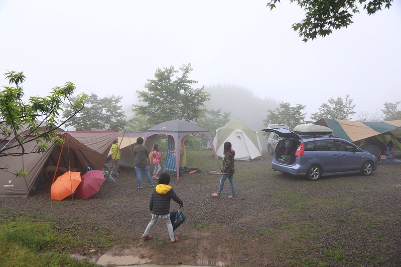 阿順家三兩下就快搭好帳篷