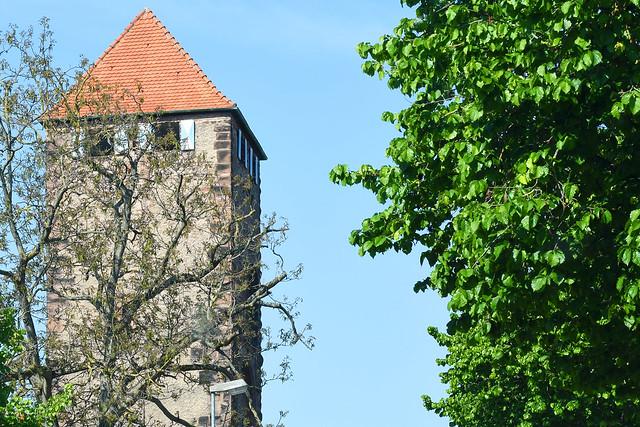 Fahrt von Schriesheim über Ladenburg nach Mannheim-Seckenheim ... Erdbeerzeit, Spargelsaison ... Foto: Brigitte Stolle, Mannheim, April 2017