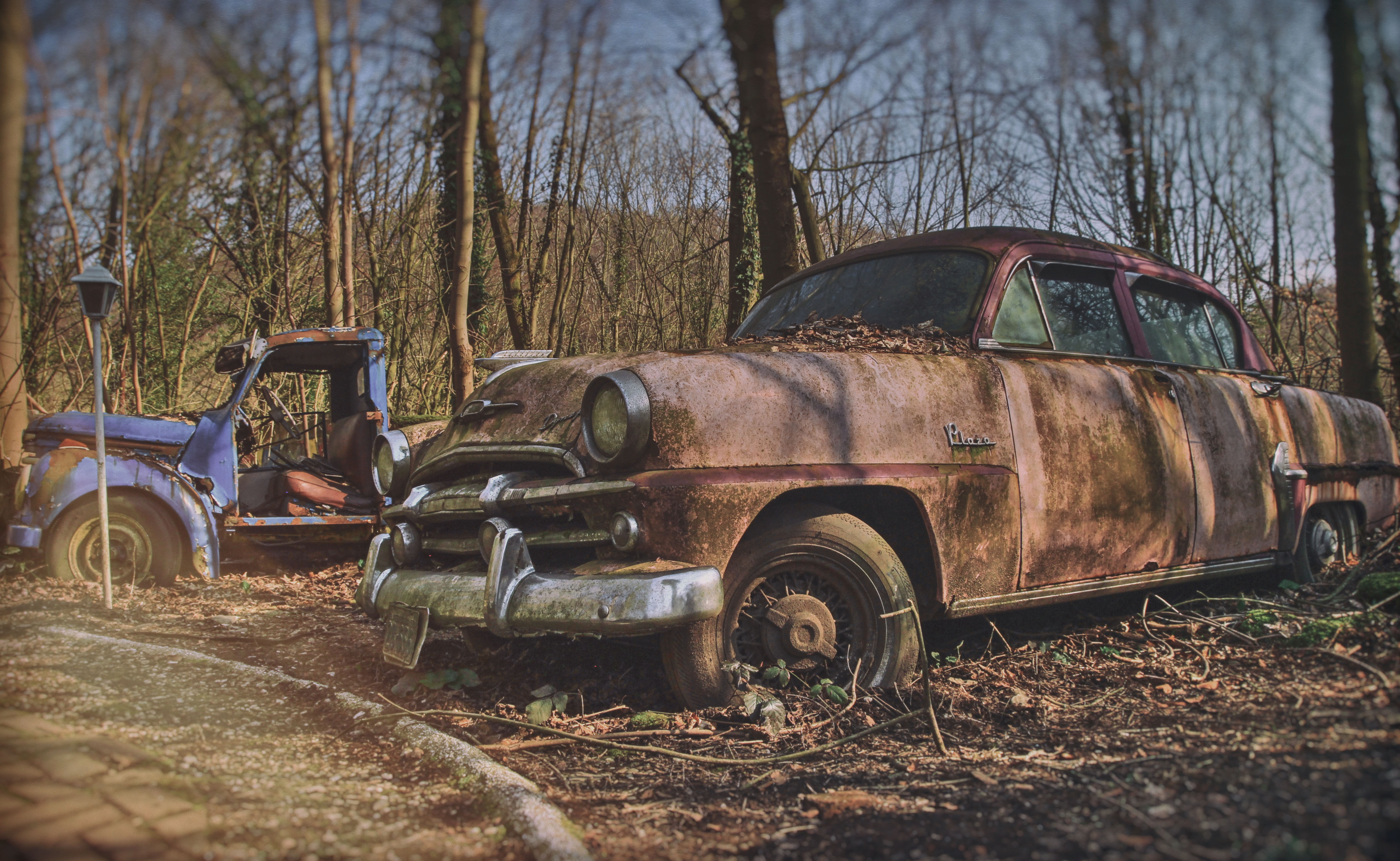 Off Road! Old cars left as rusty sculptures by a private collector ...