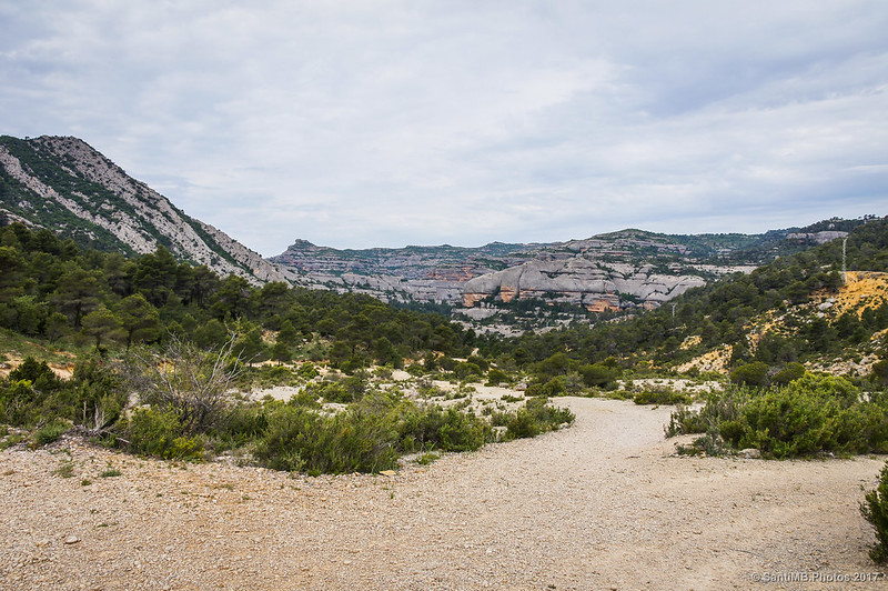 Vista de la Serra le la Llena desde el Coll del Prat