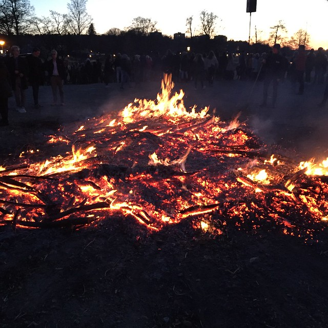 Veckans Nay - Skogsbrand i Portugal
