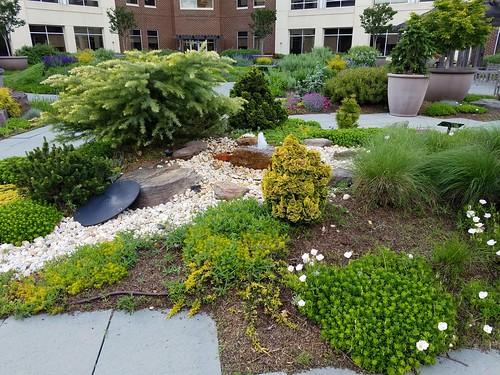Hospital Healing Garden