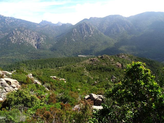 Vallée du Cavu, vallon de Niffru en face entre le canyon de Lora à gauche et Punta Radichella à droite. Punta Balardia et Punta Batarchjone au fond en face...