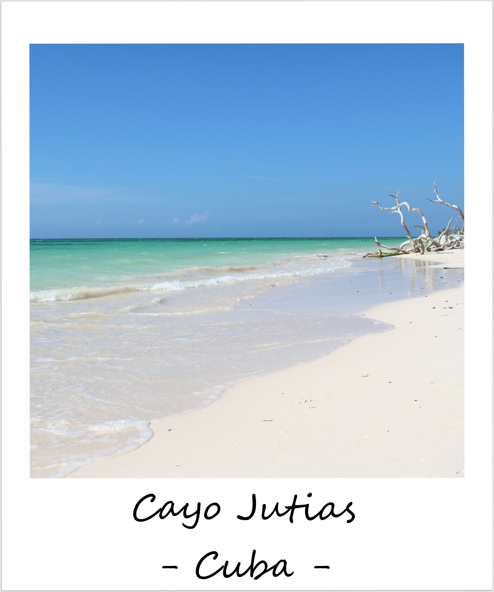 polaroid of the week cuba cayo jutias
