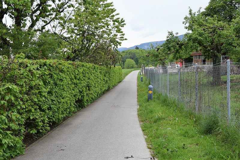 Feldbrunnen village (9)