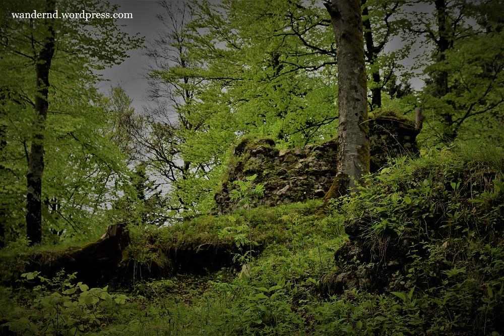 Ruine Hohenburg in Lenggries