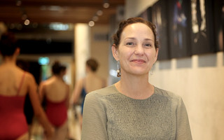 Donna Wilcox regional arts