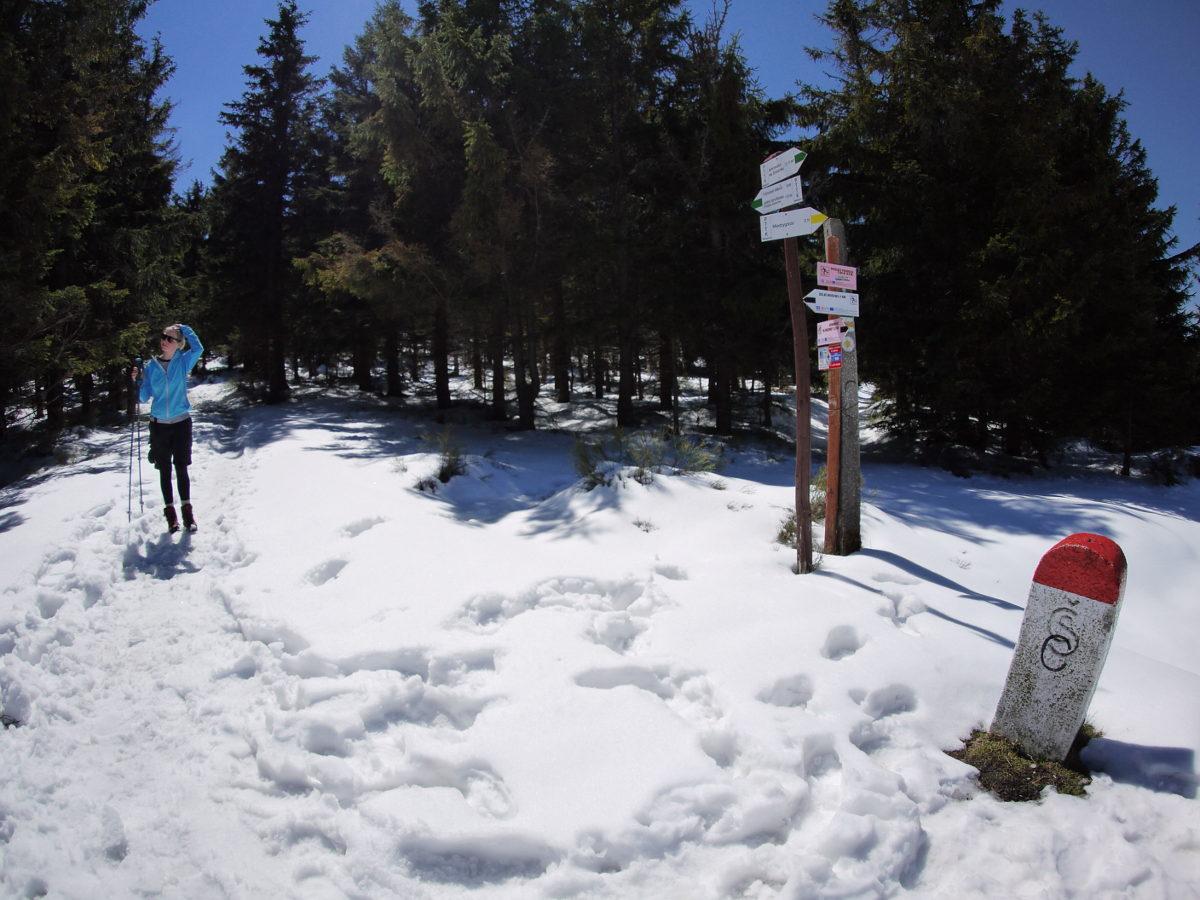 Przełęcz Puchacza, Masyw Śnieżnika