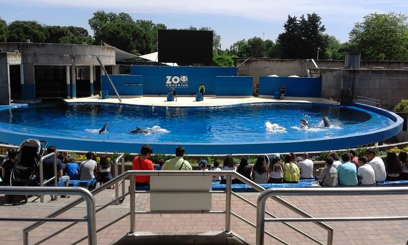 Primaria. Visita al Zoo