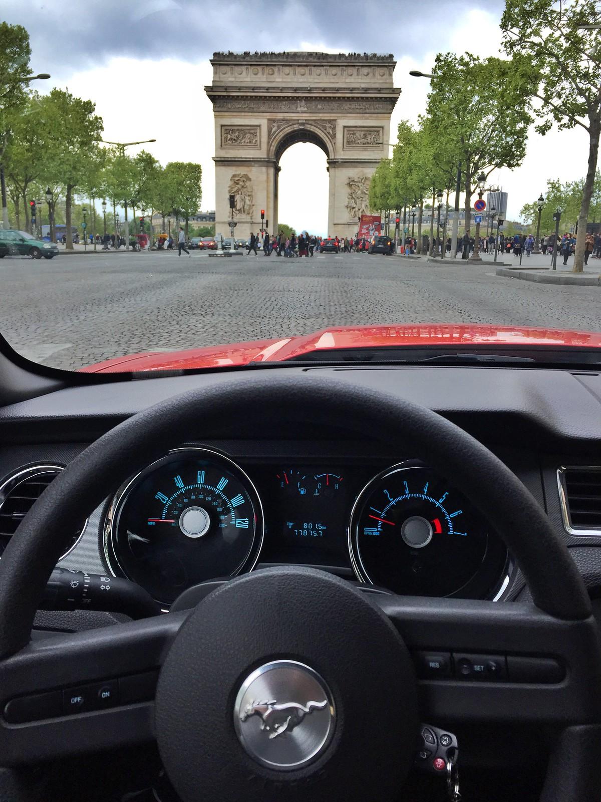 Viajar a Paris con Perro - Travel to Paris with dog viajar a paris con perro - 34559995176 1ce0a86454 h - Viajar a Paris con perro