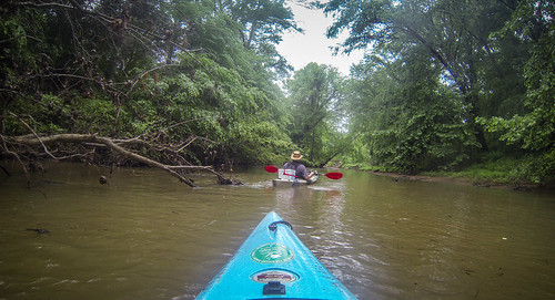 Long Cane Creek with Lowcountry Unfiltered-34