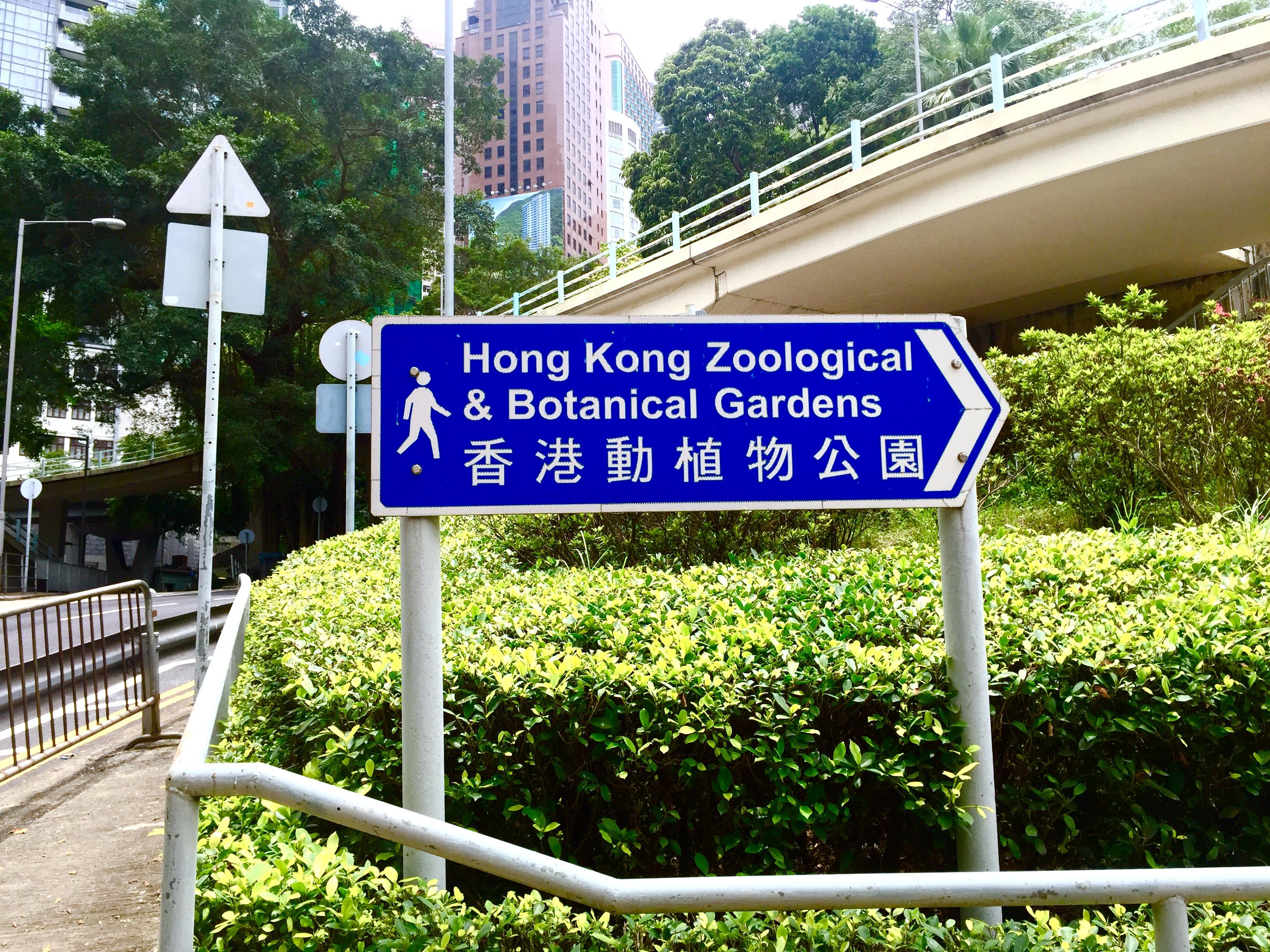 #hkig #hongkong