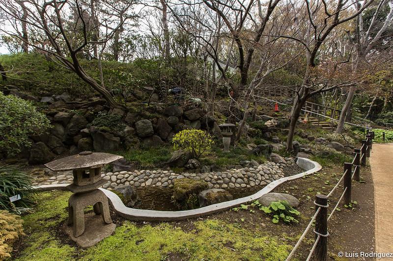 Valle-Todoroki-Tokio-51