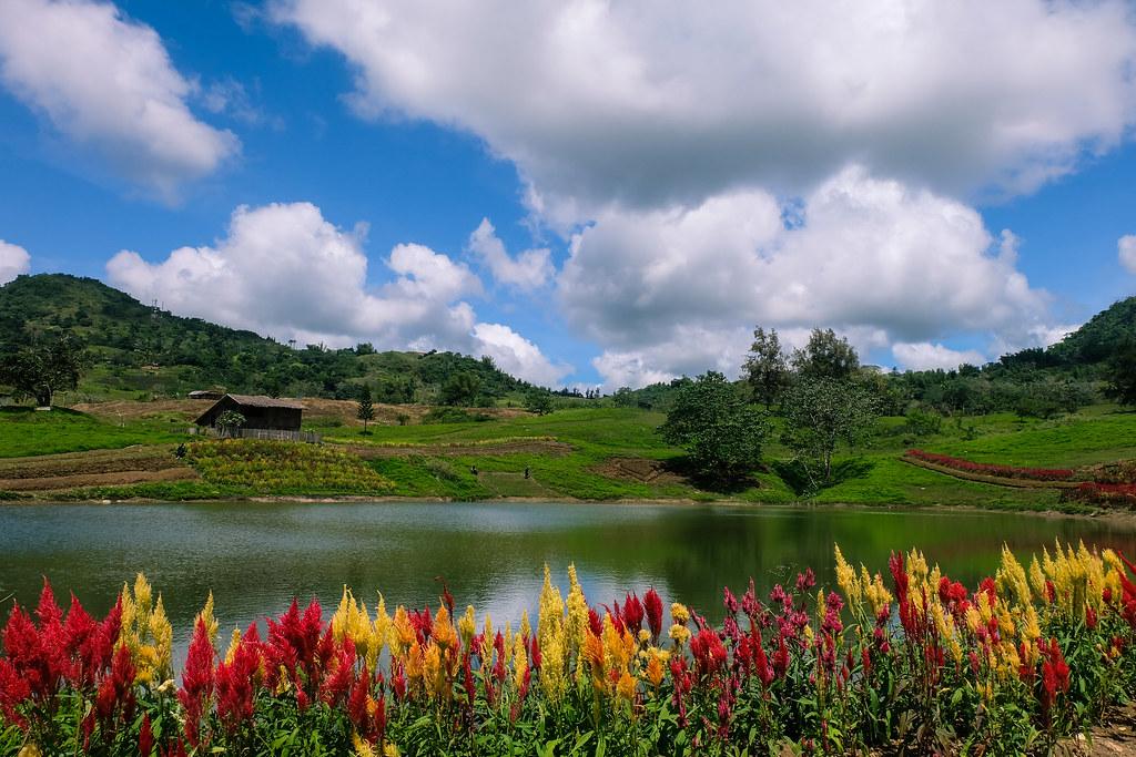 Tieza Botanical Garden