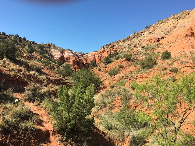 Paulo Duro Canyon