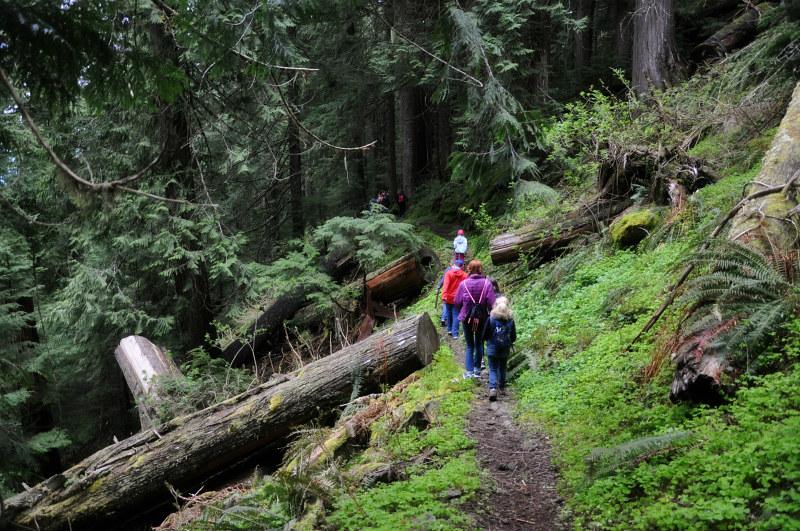 Marys Peak Hike @ Mt. Hope Chronicles