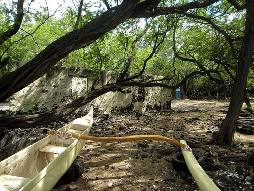 Beached among Kiholo Bay's branches (Big Island) | by House Vixen Design