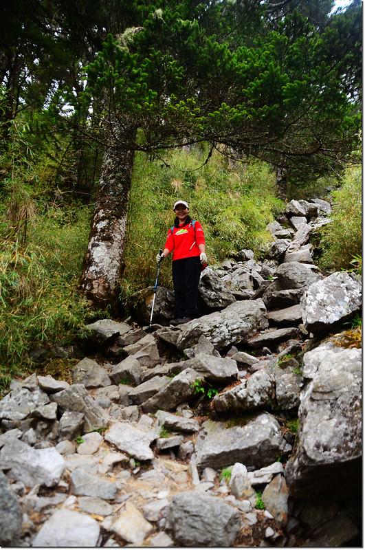 玉山前峰石瀑區 8