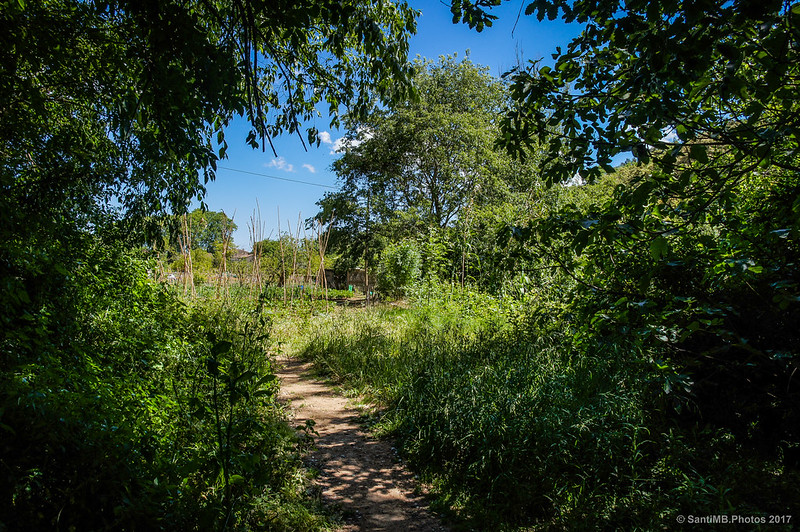 Camino de los huertos del Gorg de la Plana