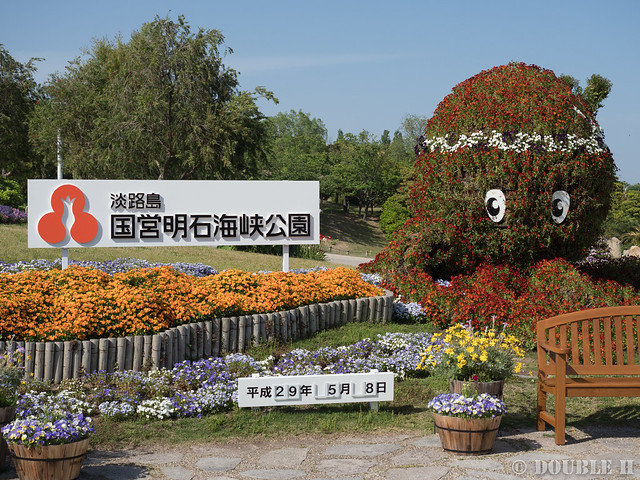 Akashi Kaikyo National Government Park (50)