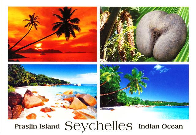 SeychellesPCTulp_0001