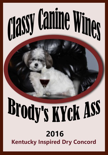 Brody's 2016 KYck Ass Label