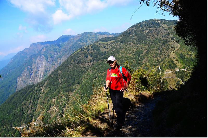玉山登山步道(後為石水、鹿林、麟趾等山)