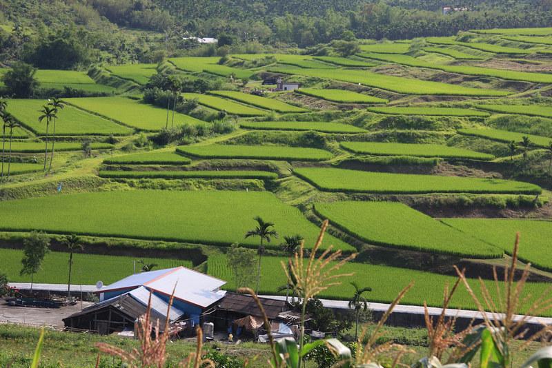 花蓮農改場案例,獲選編入聯合國《里山倡議主題案例彙編》當中,讓世界都看到了台灣在生態農業上所做出的努力