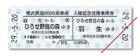 第13回わくわく鉄道フェスタ☆東武鉄道8000系車両広瀬川原駅入線記念乗車券(乗車券イメージ)