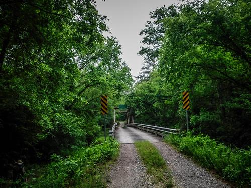 Patterson Steel Truss Bridge on Long Cane Creek-004