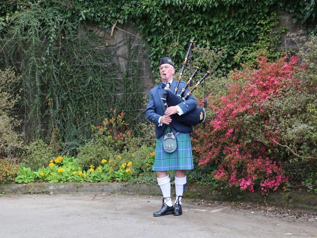 pollok park obiective turistice Glasgow 6