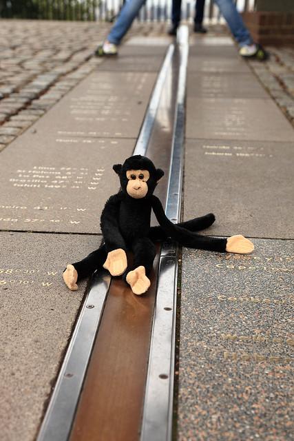 Meridian Monkey