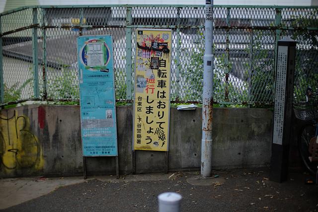 FUJI4329.jpg