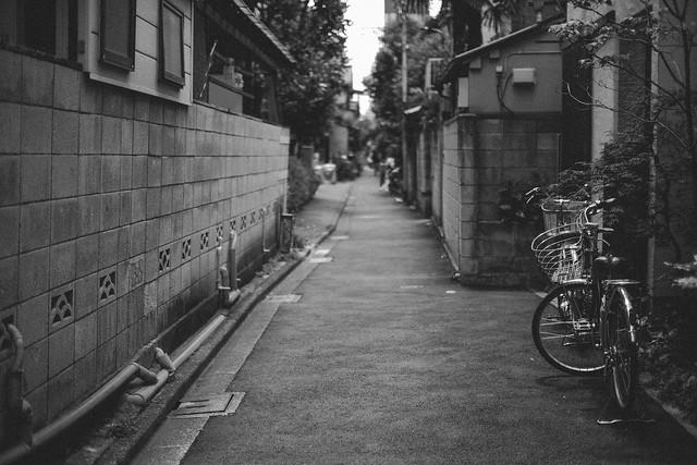 FUJI4308.jpg