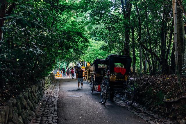 Kyoto_Arashiyama_13