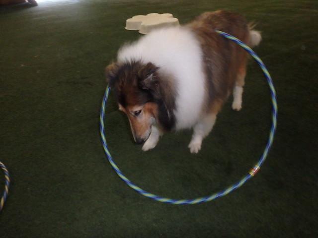 06_20_17 Hula Hoop Play :-)