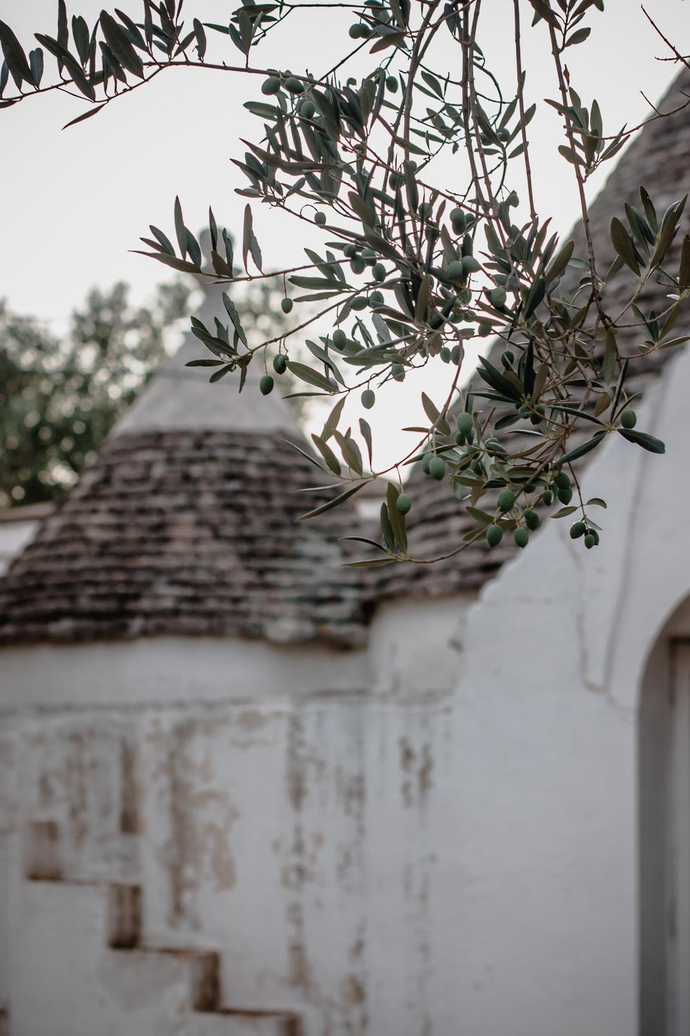 The Puglia Encounter at Masseria Potenti - Saghar Setareh-2