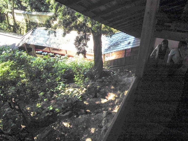 紫陽花回廊の階段 楊谷寺 柳谷観音