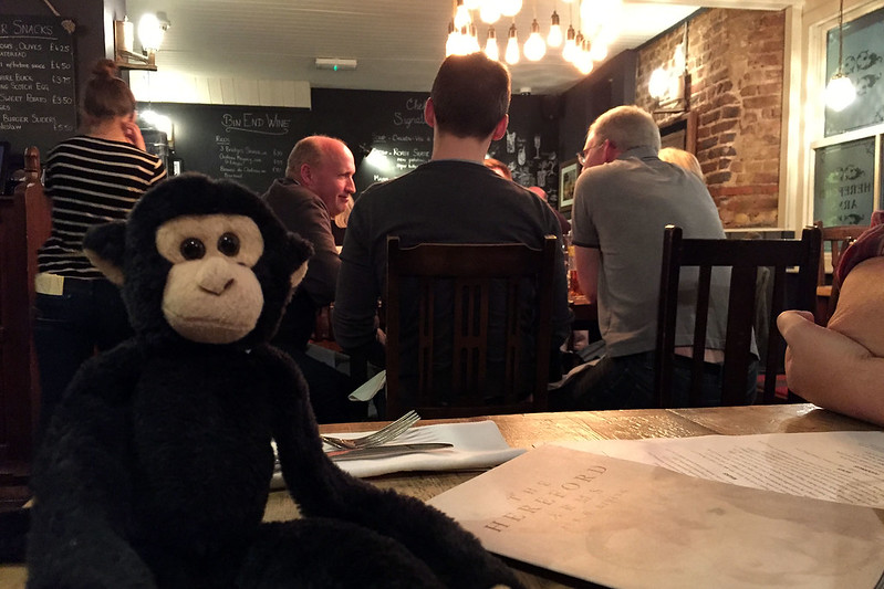 Monkey at Hereford Arms