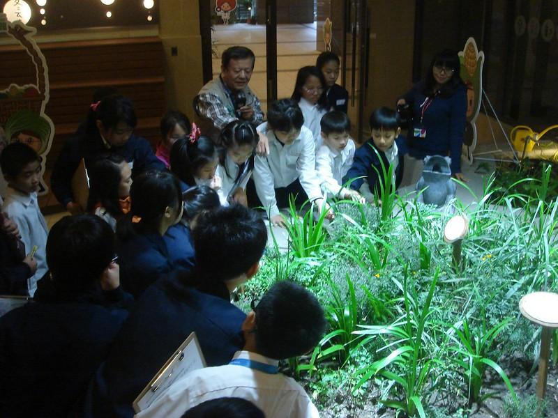 綠色生活館-導覽活動-小學生參訪
