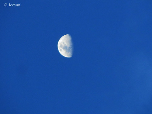 A  shy moon in sky