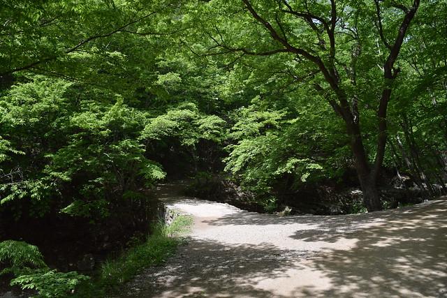 Seonamsa Temple (11)